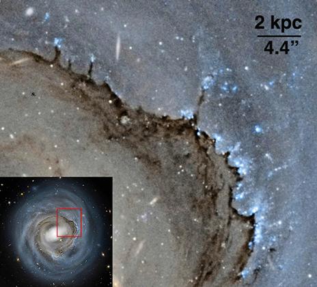 Il lato principale del disco mostra gli effetti della pressione sulla polvere. Crediti: NASA, ESA e Roberto Colombari