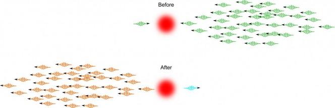 Impressione artistica di ciò che avviene quando un fotone passa attraverso un mezzo atomico accuratamente preparato insieme ad un impulso composto da molti fotoni. La variazione di colore rappresenta i cambiamenti di fase non lineari di ciascun impulso, proporzionale al numero di fotoni. Credits: Amir Feizpour
