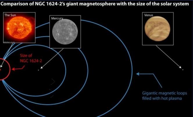 Il campo magnetico della stella di tipo spettrale O chiamata NGC 1624-2 è insolitamente grande per la sua classe. Nell'immagine una simulazione di quanto sarebbe esteso il suo campo magnetico se la stella si trovasse al posto del Sole. Crediti: SOHO