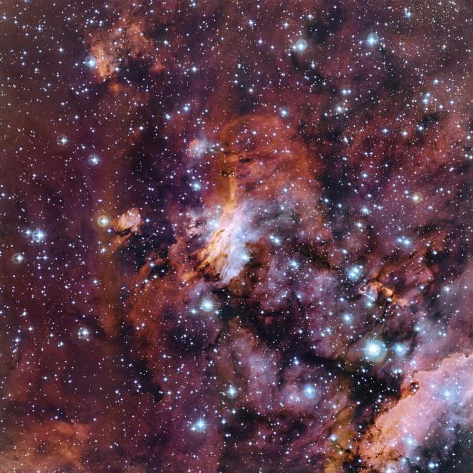 Questo prezioso ricamo di nubi di gas fa parte di un'enorme incubatrice stellare nota come Nebulosa Gambero (o anche Gum 56 o IC 4628). Presa con il telescopio da 2,2 metri dell'MPG/ESO all'Osservatorio di La Silla in Cile, questa è proabilmente una delle più belle immagini di quest'oggetto. Crediti: ESO