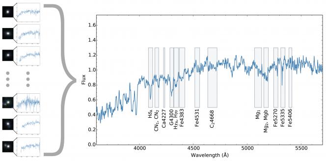 Lo spettro delle stelle in 24 galassie morte. Crediti: ETH Zürich/NAOJ