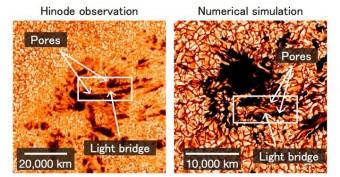 A sinistra: le osservazioni della sonda Hinode della JAXA mostrano lo sviluppo di una macchia solare. Una struttura brillante ed allungata, il 'light bridge', appare tra i due pori che si stanno fondenndo (le regioni più scure). A destra: la formazione di una macchia solare nella simulazione al computer realizzata dal team di Shin Toriumi. Crediti: NAOJ/JAXA/LMSAL/NASA