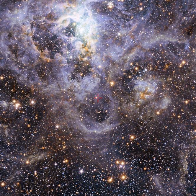 La veduta della regione di formazione stellare della Tarantola è composta da immagini in luce visibile ottenute dal WFI (Wide Field Imager) montato sul telescopio da 2,2 metri dell'MPG/ESO all'Osservatorio di La Silla e da immagini infrarosse ottenute con il telescopio infrarosso VISTA da 4,1 metri al Paranal. Crediti: ESO/M.-R. Cioni/VISTA Magellanic Cloud survey. Acknowledgment: Cambridge Astronomical Survey Unit