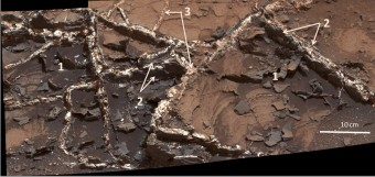 Dettaglio delle vene minerali presenti nel sito Garden City studiato dal rover Curiosity. Nell'immagine raccolta dalla Mast Camera è possibile apprezzare le variazioni di spessore e luminosità delle vene. L'immagine copre una zona di circa 60 cm di larghezza. I tipi di materiale che compongono le vene permettono di distunguerne tra: 1) fratture sottili di colore scuro; 2) fratture spesse di colore scuro; 3) vene di tonalità chiare, di materiale più giovanelù. Crediti: NASA/JPL-Caltech/MSSS