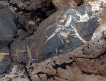 Le venature chiare all'interno del materiale più scuro rappresentano alcune delle vene minerali osservate presso il sito Garden City, alla base del Monte Sharp. Il Mars Hand Lens Imager (MAHLI) a bordo del rover Curiosity della NASA ha scattato l'immagine il 4 aprile 2015. La regione ha le dimensioni di circa 1 centimetro di larghezza. Crediti: NASA/JPL-Caltech/MSSS