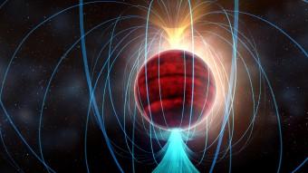 Lo straordinario campo magnetico di una nana rossam nel rendering di un artista.