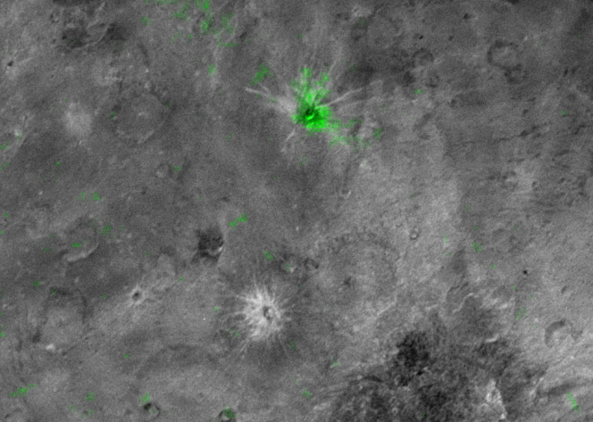 Quello segnato in verde è Organa, il più giovane cratere trovato su Caronte. Organa è un cratere ricco di ammoniaca congelata e - finora - sembra essere l'unico del suo genere sulla più grande luna di Plutone. Credits: NASA / JHUAPL / SWRI