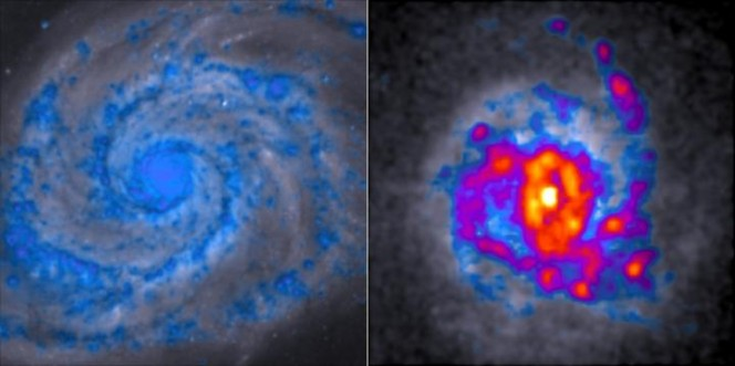 Le comuni galassie a spirale, come la Whirlpool galaxy alla sinistra dell'immagine, producono una quantità di stelle di gran lunga inferiore a quella prodotta dall'agglomerato visibile sulla destra. In rosso e giallo sono evidenziate le regioni più ricche di stelle. Crediti: Danail Obreschkow, ICRAR.