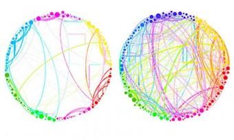 """Questo diagramma mostra i risultati semplificati che possono essere ottenuti grazie all'analisi quantistica d'insiemi di dati enormi e complessi. Quelle rappresentate sono le connessioni fra diverse regioni del cervello in un soggetto di controllo (a sinistra) e in un soggetto sotto l'influenza d'una sostanza psichedelica, la psilocibina (a destra). Si nota un drammatico aumento della connettività, che spiega alcuni degli effetti della droga (come il """"sentire"""" i colori o il """"vedere"""" gli odori). Un'analisi come questa, che coinvolge miliardi di cellule cerebrali, è troppo complessa per le tecniche tradizionali, ma potrebbe essere gestita facilmente dal nuovo approccio quantistico, dicono i ricercatori. Crediti: Seth Lloyd, Silvano Garnerone e Paolo Zanardi"""