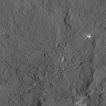 La superficie fratturata del cratere Dantu di Cerere come è stato visto dalla sonda Dawn della NASA. Fratture simili si sono viste su Tycho, uno dei più giovani grandi crateri lunari. Questa struttura può essere il risultato del raffreddamento a seguito dell'impatto, o del sollevamento del suolo, dopo la formazione del cratere. Crediti: NASA/JPL-Caltech/UCLA/MPS/DLR/IDA