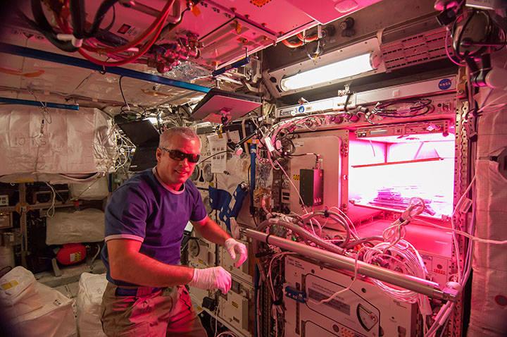 L'astronauta NASA Steve Swanson. Crediti: NASA