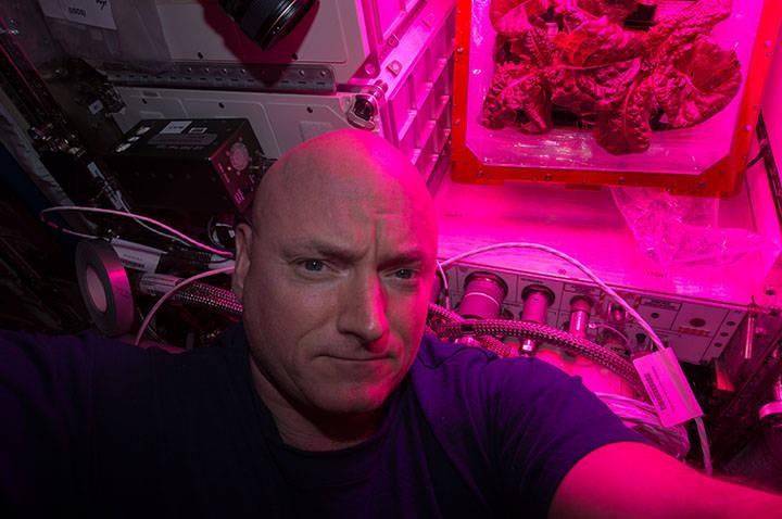Il selfie di Scott Kelly con il secondo raccolto di insalata. Crediti: NASA