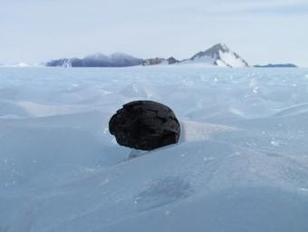 antarctic-meteorite