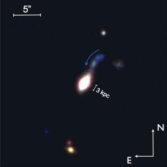 Immagine a colori di una delle galassie compatte, osservate con il VST, a redshift z=0.26 (cui corrisponde una distanza di circa 3 miliardi di anni luce). Si coglie il dettaglio dell'interazione della galassia compatta con una piccola compagna vicina di colore blu che nell'interazione si sta dissolvendo in più pezzi. (Crediti: Nicola Napolitano / AstroWISE)