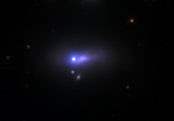 Il punto blu e bianco al centro dell'immagine è una supernova SN 2012cg, visto dal telescopio di 1.2 metri del Fred Lawrence Whipple Observatory. A 50 milioni di anni luce di distanza, questa supernova è così distante che la sua galassia ospite, la spirale chiamata NGC 4424, appare come una sottile striscia di luce viola. Crediti: Peter Challis/Harvard-Smithsonian CfA