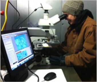 Christine McCarthy mentre ispeziona i campioni in laboratorio.