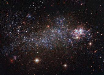 La galassia irregolare NGC 5408, che ospita una delle peculiari sorgenti scoperte grazie al telescopio spaziale XMM-Newton. Questa immagine è stata catturata dal telescopio spaziale Hubble. Crediti: ESA/Hubble/NASA/J. Schmidt (Geckzilla)