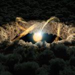 protostella-disco