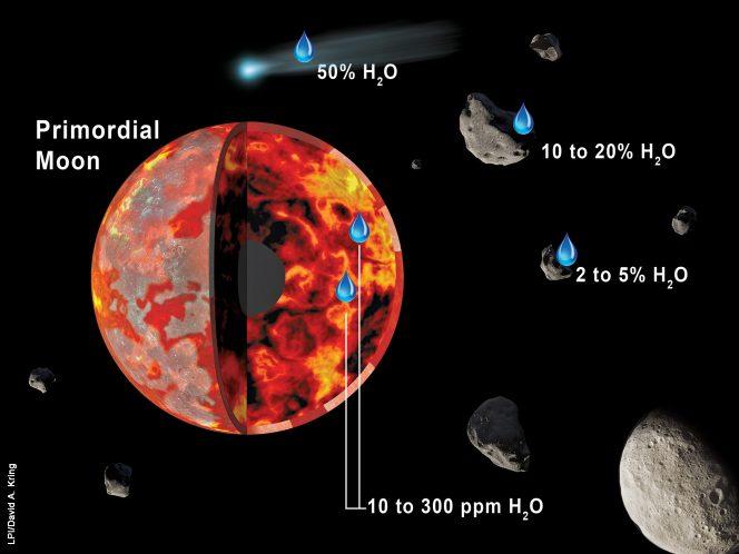 La Luna potrebbe aver ricevuto acqua quando si trovava in uno stato ancora parzialmente fuso (regione di colore rosso e arancione), mentre la sua crosta primordiale (regioni in grigio e bianco) si stava formando. Le composizioni isotopiche degli elementi volatili presenti nei campioni lunari suggeriscono che la fonte principale di quell'acqua siano stati asteroidi simili a meteoriti carbonacee di tipo CI, CM e CO. Le meteoriti di tipo CI e CM contengono acqua dal 10 al 20%, mentre quelle di tipo CO ne contengono dal 2 al 5%. Sebbene le comete possano contenere molta più acqua (fino al 50%), le loro composizioni isotopiche non corrispondono a quelle degli elementi volatili lunari. Si ritiene che meno del 20% dell'acqua all'interno della Luna provenga dalle comete. Crediti: LPI/David A. Kring