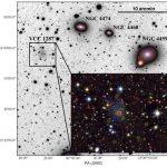 Nell'immagine la regione dell'ammasso della Vergine che contiene la galassia ultra-diffusa chiamata VCC 1287. L'immagine di sfondo ha una dimensione di 500 mila anni luce di lato, utilizza un'immagine negativa per contrasto, ed è stata ottenuta con un telescopio amatoriale da 10 centimetri di diametro presso l' Antares Observatory in Svizzera. L'immagine nell'inserto è una composizione di immagini di VCC 1287 raccolte dal telescopio da 4 metri telescopio Canada-France-Hawaii che si trova presso Mauna Kea. I simboli colorati indicano le posizioni degli ammassi globulari studiati per le misurazioni di velocità orbitali con il Gran Telescopio Canarias (GTC) da 10 metri. Crediti: IAC