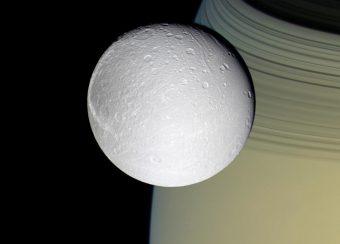 La luna di Saturno Dione. Sullo sfondo sono visibili gli anelli di Saturno. Crediti: NASA/JPL