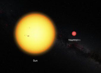 Questa immagine mostra il Sole e la nana ultra-fredda TRAPPIST-1, in scala. La debole stella ha un diametro pari all'11% del diametro del Sole e ha un colore molto più rosso. Crediti: ESO