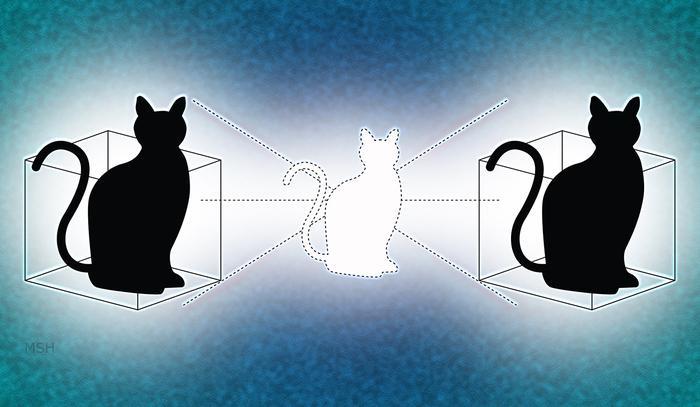 Il gatto di Schrödinger raddoppia
