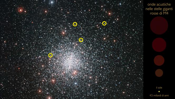 L'immagine mostra l'ammasso stellare globulare M4 e la posizione nel cielo di alcune delle stelle all'interno delle quali sono state identificate oscillazioni acustiche. Cliccare sull'immagine per aprire la pagina web interattiva dove, posizionando il cursore all'interno dei cerchietti gialli, è possibile ascoltare il suono caratteristico delle oscillazioni globali degli astri. Le frequenze dei suoni sono state aumentate di 10 milioni di volte per renderle udibili all'orecchio umano. Mantenendo lo stesso fattore moltiplicativo, le oscillazioni acustiche del Sole sarebbero così elevate da cadere nel dominio degli ultrasuoni. Sulla colonna di destra sono riportate le dimensioni relative delle stelle analizzate, gliganti rosse con raggi tra le 8 e le 16 volte quelli del nostro Sole. Crediti: A. Miglio, ESO