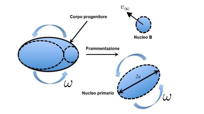 Modello della frammentazione. Inizialmente, il corpo progenitore biassiale è in rotazione uniforme. Dopo la rottura, il corpo si separa in due componenti: uno è il nucleo principale a forma di ellissoide biassiale, e l'altro è il nucleo B, che è una massa (quasi) puntiforme. Dalle osservazioni si desume che la massa del nucleo B è trascurabile rispetto a quella del nucleo principale.