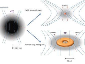 Il collasso di una nube molecolare rotante porta alla formazione di un grande disco sostenuto rotazionalmente se vengono rimossi i granelli di polvere molto piccoli (b). La forte frenata magnetica in presenza di grani molto piccoli inibisce la formazione di un disco protostellare (a). Crediti: MPE