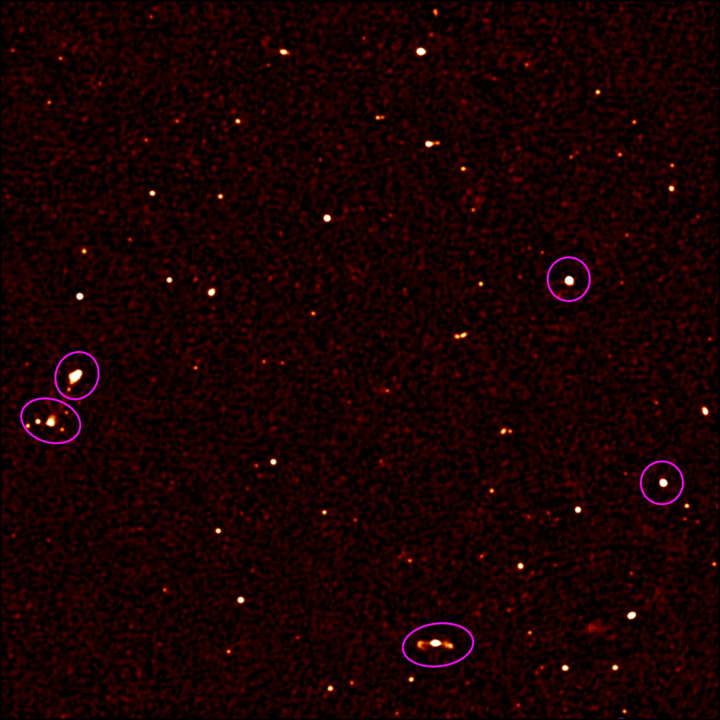 Immagine che mostra il 10% dello scatto realizzato MeerKAT in cui si vedono più di 200 sorgenti radio astronomiche (i punti bianchi). Quelle cerchiate in viola sono le sorgenti radio già conosciute. Questa immagine si estende su un'area grande come la nostra Luna. Crediti: SKA Africa