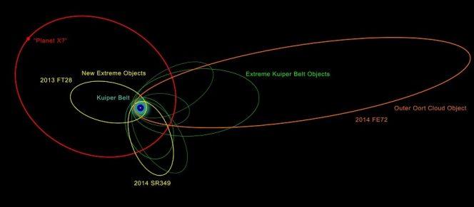 Illustrazione delle orbite dei nuovi e dei già noti oggetti agli estremi del Sistema solare. L'allineamento della maggior parte delle loro orbite indica che sono probabilmente influenzati dalla gravità di qualcosa di massiccio e molto distante, l'ipotetico nono pianeta. Immagine per gentile concessione di Robin Dienel