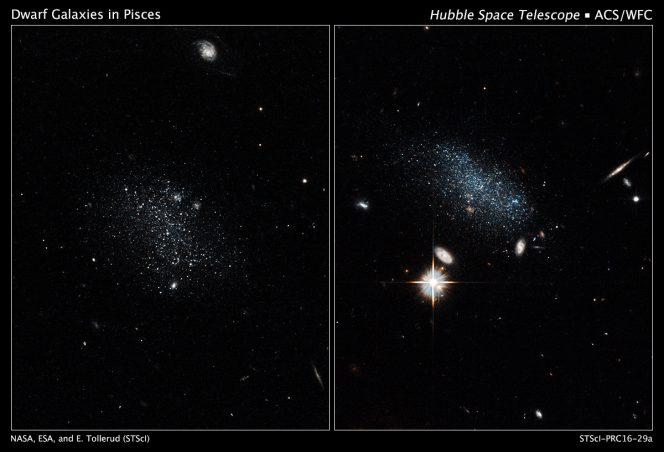 Le galassie nane Pisces A e Pisces B, rispettivamente nei pannelli a sinistra e a destra, riprese dal telescopio spaziale Hubble con la Advanced Camera for Surveys. Crediti: NASA, ESA, and E. Tollerud (STScI)