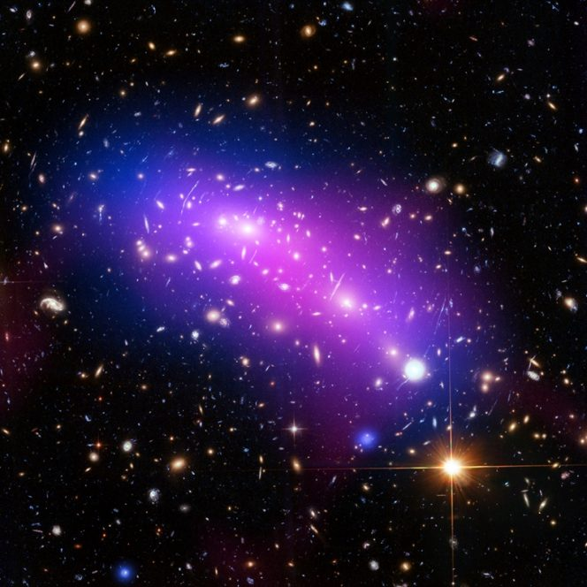 L'ammasso di galassie MACS J0416 visto nei raggi X (in blu), in luce visibile (in rosso, verde e blu) e in radio (in rosa). Crediti: NASA / CXC / SAO / G. Ogrean / STSCI / NRAO / AUI / NSF.
