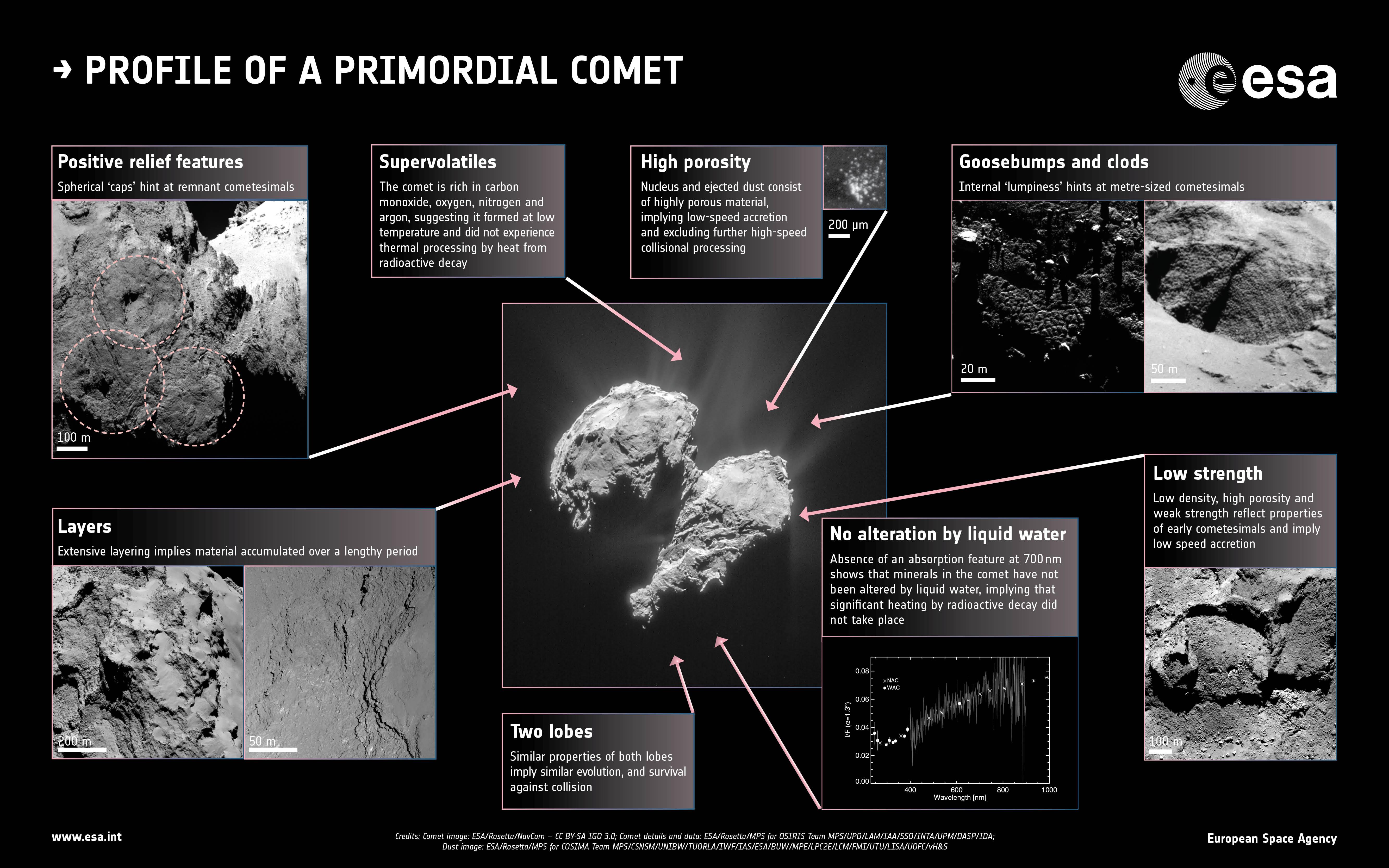 La cometa 67P. Crediti: Centre: ESA/Rosetta/NavCam – CC BY-SA IGO 3.0; Insets: ESA/Rosetta/MPS for OSIRIS Team MPS/UPD/LAM/IAA/SSO/INTA/UPM/DASP/IDA; Fornasier et al. (2015); ESA/Rosetta/MPS for COSIMA Team MPS/CSNSM/UNIBW/TUORLA/IWF/IAS/ESA/BUW/MPE/LPC2E/LCM/FMI/UTU/LISA/UOFC/vH&S; Langevin et al. (2016)