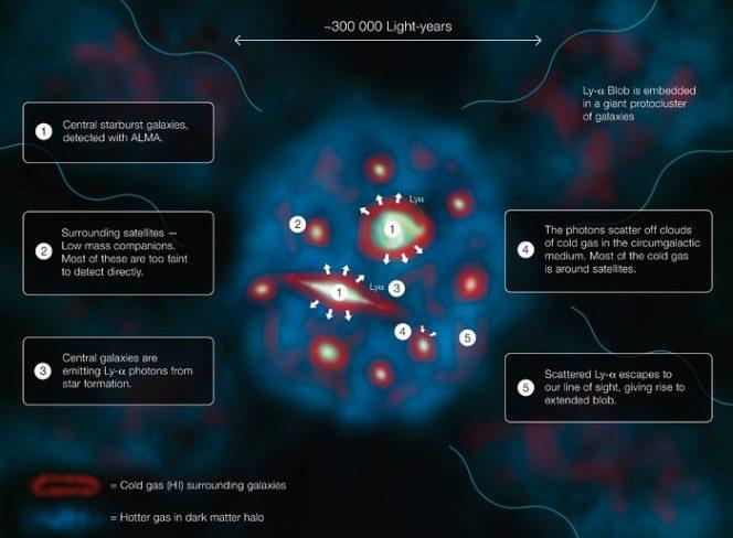 """Questo diagramma (in inglese) spiega come funziona un """"blob"""" Lyman-alfa, uno degli oggetti più grandi e più brillanti nell'Universo. Crediti: ESO/J. Geach"""