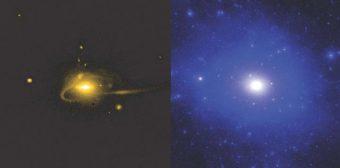 Due fotogrammi presi dalla simulazione: a sinistra, la distribuzione di stelle in una galassia simile alla nostra, a destra la mappa della materia oscura presente nella stessa zona. Crediti: A. Wetzel