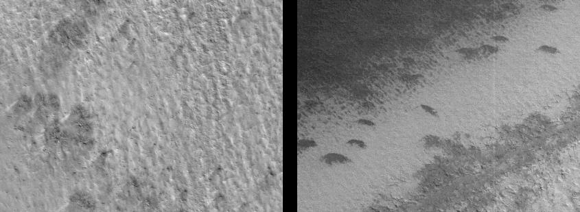 Altre macchie a forma di ragni. Immagine Crediti: NASA / JPL-Caltech / Malin Space System Science