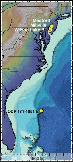 In giallo, le località dei ritrovamenti, lungo la costa del New Jersey e al largo delle Bermuda. Crediti: Schaller et al., Science, 2016