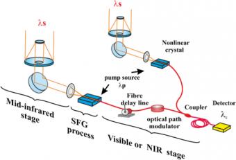 Uno schema dell'esperimento. Crediti: P. Darré et al., Phys. Rev. Lett. (2016)
