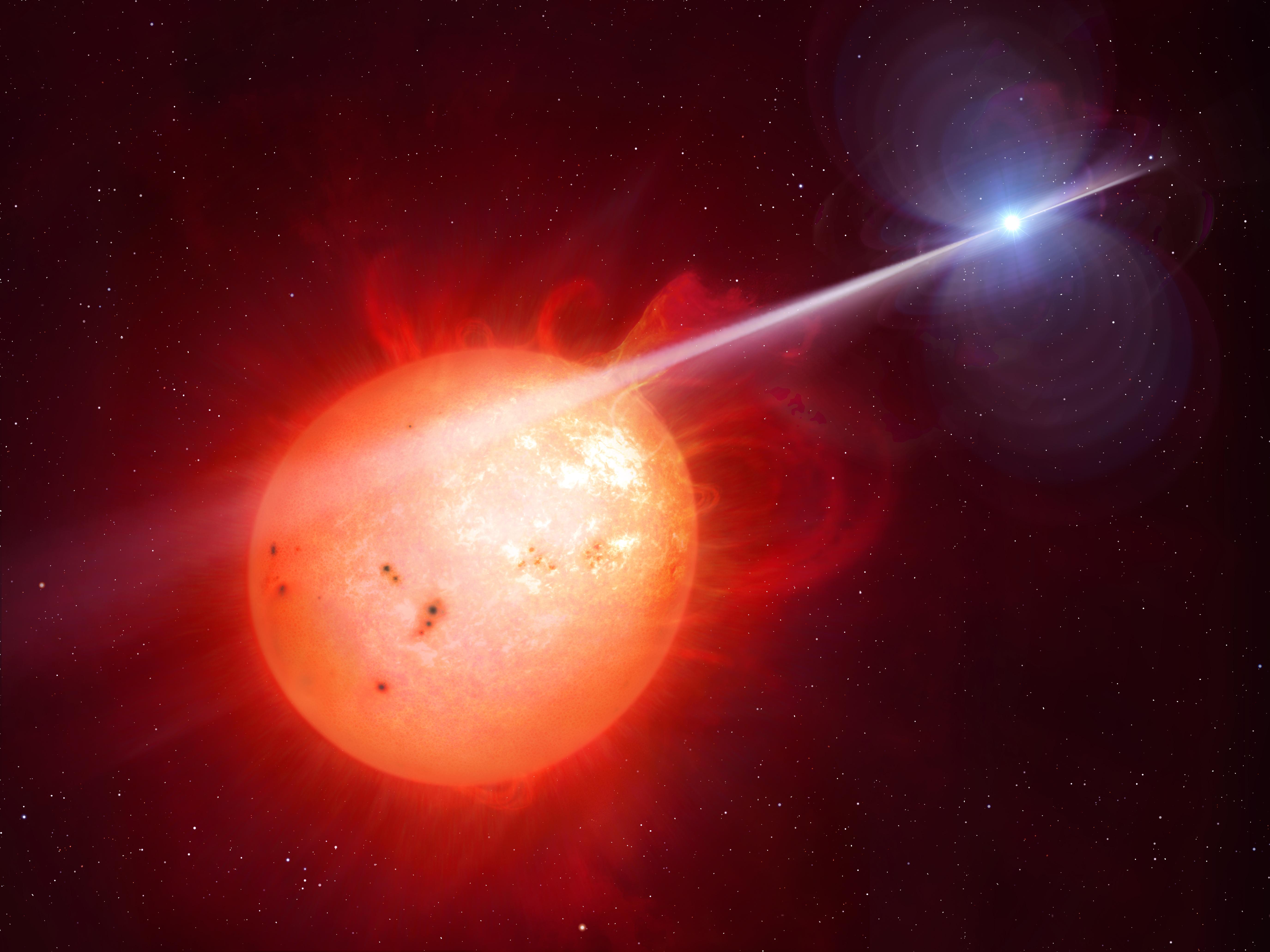 Attenti a quella pulsar: è una nana bianca