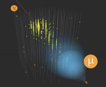 Rappresentazione di neutrini