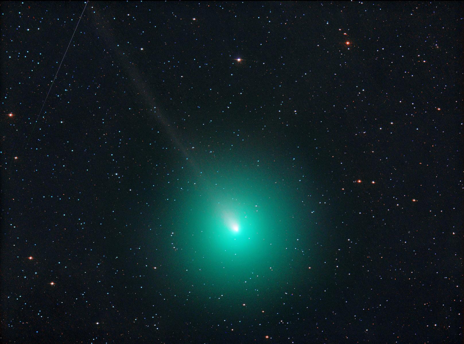 Tutti pazzi per la cometa di Natale