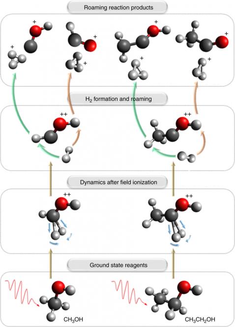 Catione idrogenonio, ora t'ho visto nascere