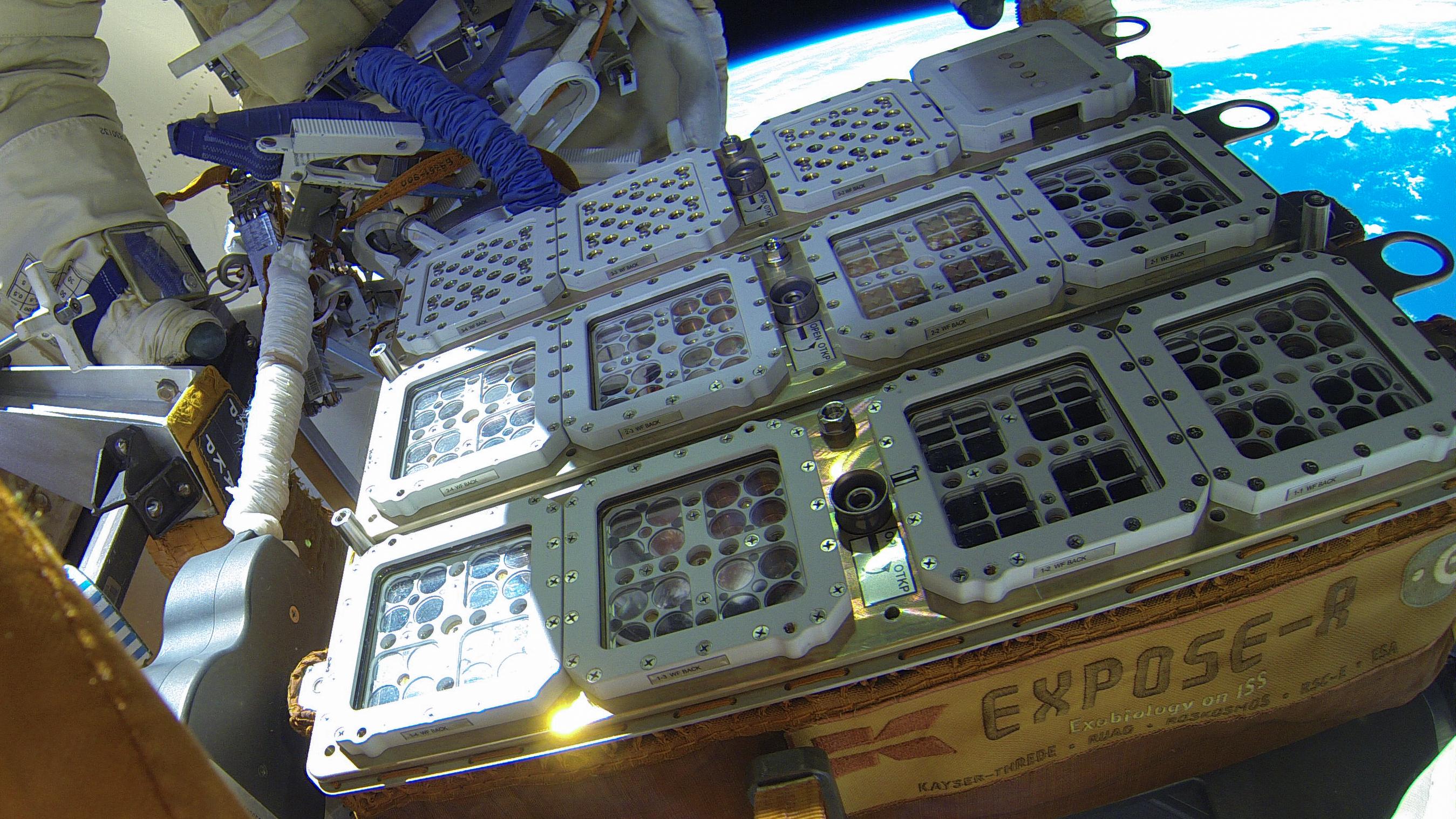 Sopravvissuti all'esterno della Stazione spaziale