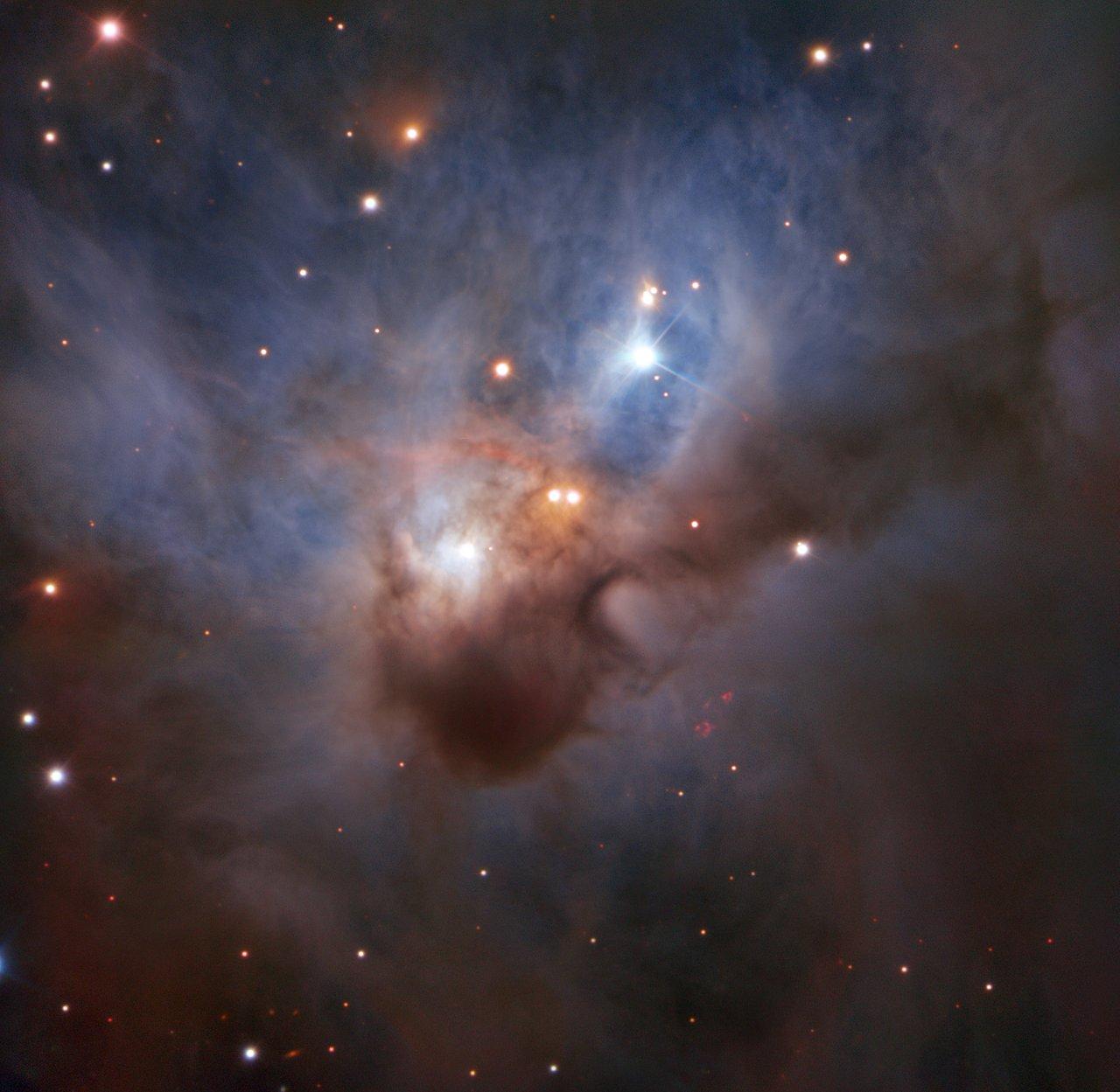C'è un pipistrello cosmico in volo su Orione