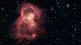 Baby stelle sotto le ali d'una farfalla spaziale