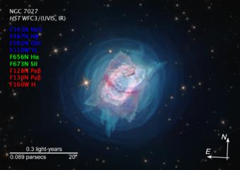 Jewel Bug Nebula