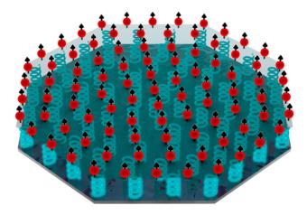 Illustrazione del sensore quantistico