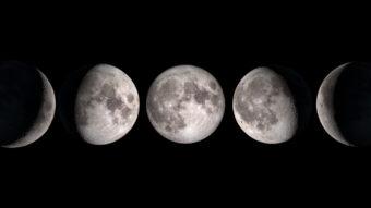 Cinque fasi della Luna. Da sinistra a destra: falce di luna crescente; luna gibbosa crescente; luna piena; luna gibbosa calante; falce di luna calante.